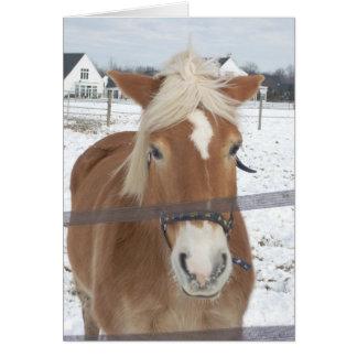 Ponny i vinter hälsningskort