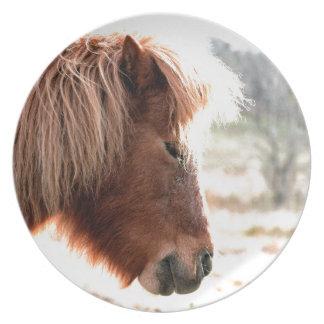 Ponny Tallrik