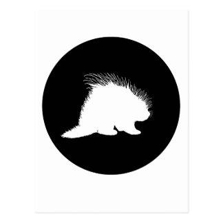 Porcupine Vykort
