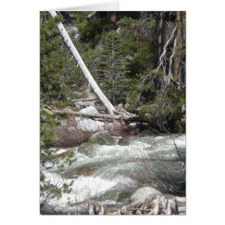 Porcupinebäck Yosemite Hälsningskort