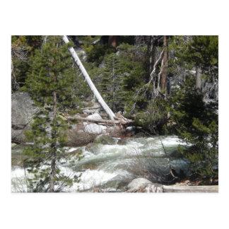 Porcupinebäck Yosemite Vykort