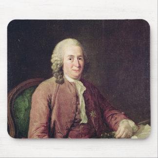 Porträtt av Carl von Linnaeus Musmatta