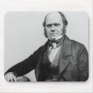 Porträtt av Charles Darwin, 1854 Musmatta
