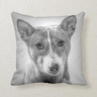Porträtt för Basenji hundgrå färg kudder Kudde