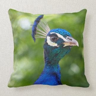 Porträtt för blåttpåfågelfågel kudde