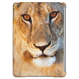 Porträtt för Lioness (Panthera Leo). Tarangire