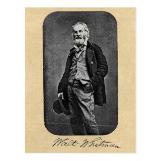 Porträtt för Walt Whitman ålder 41 Vykort