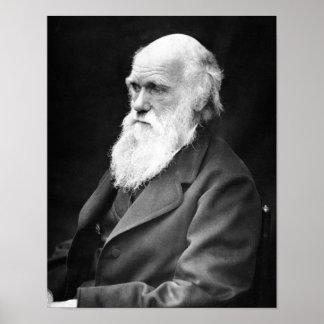 Porträttfoto av Charles Darwin Poster