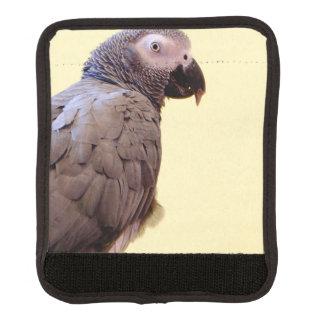 Posera papegojor handtagsskydd