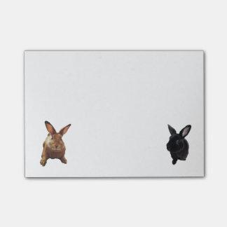 Posta-kanin Post-it Lappar
