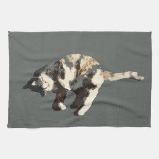 posterized grå färg för calico katt tillbaka på si kökshandduk