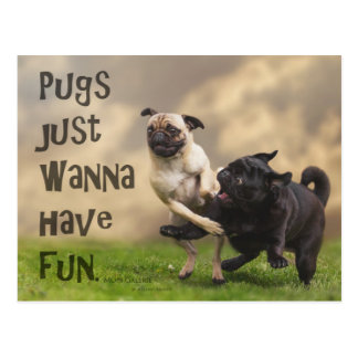 "Postkarte ""Pugs just wanna have fun"" Vykort"