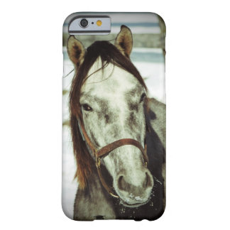 Precis horsin omkring barely there iPhone 6 fodral