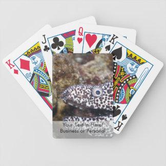 prickigt djur för ålrätsidaakvarium spelkort