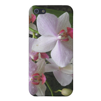 Princeville Orchid iPhone 5 Cover