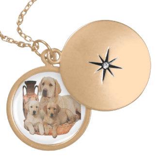 Produkter för Labrador retriever Guldpläterat Halsband