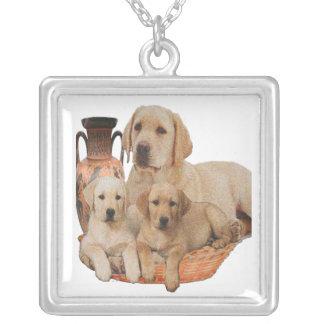 Produkter för Labrador retriever Silverpläterat Halsband