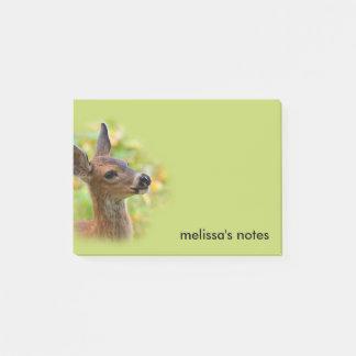 Profilera av en barn Svart-Tailed hjort Post-it Block