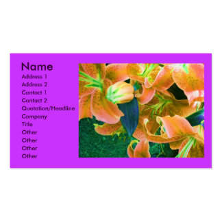 """Profilerar blomsterhandlaren"" kortet Set Av Standard Visitkort"
