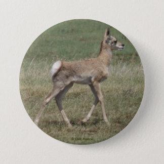 Pronghorn för baby A0042 antilop Mellanstor Knapp Rund 7.6 Cm