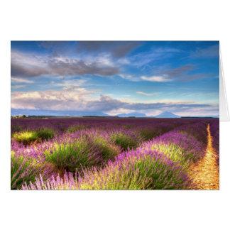 Provence - lavendel sätter in hälsningkortet hälsningskort
