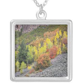 Provo flod- och aspenträd 10 silverpläterat halsband