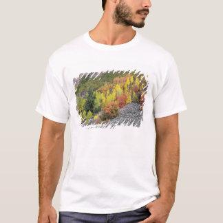 Provo flod- och aspenträd 10 t-shirt
