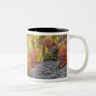 Provo flod- och aspenträd 10 Två-Tonad mugg