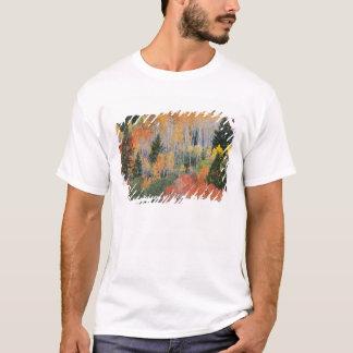 Provo flod- och aspenträd 11 tee shirt