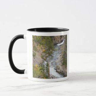 Provo flod- och aspenträd 14 mugg