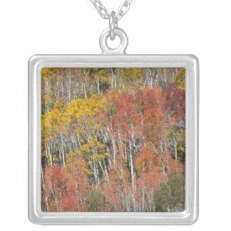 Provo flod- och aspenträd 15 silverpläterat halsband