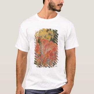 Provo flod- och aspenträd 6 tröjor