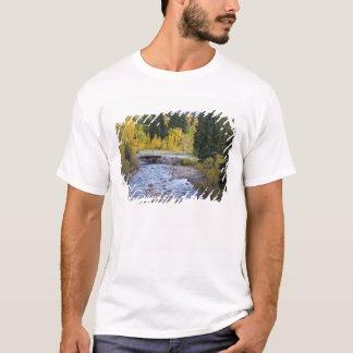 Provo flod- och aspenträd 8 tee shirt