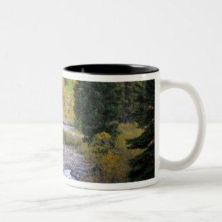 Provo flod- och aspenträd 8 Två-Tonad mugg