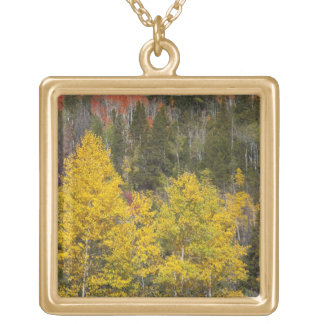 Provo flod- och aspenträd 9 guldpläterat halsband