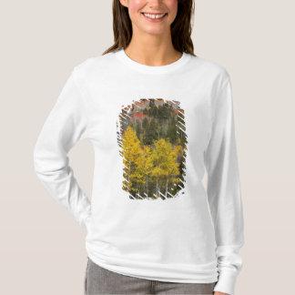 Provo flod- och aspenträd 9 tshirts
