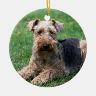 Prydnad för foto för walesisk terrierhund härlig julgransprydnad keramik