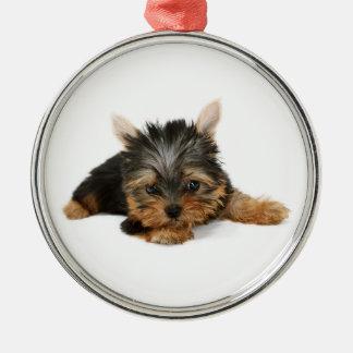 Prydnad för valp för Yorkshire Terrier högvärdig Julgransprydnad Metall