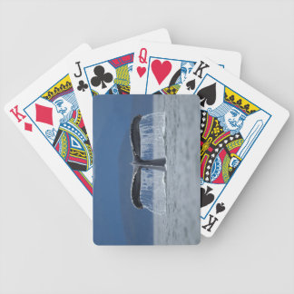 Puckelryggval 2 spelkort