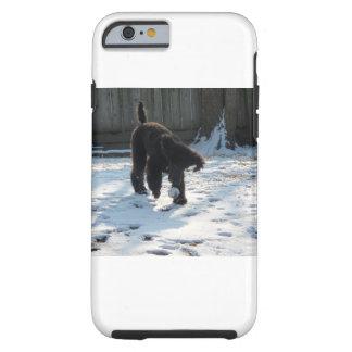 Pudel i snö tough iPhone 6 fodral