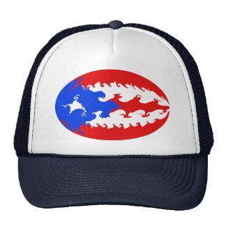 Puerto Rico Gnarly flaggahatt Trucker Kepsar