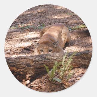 Puma 010 runt klistermärke