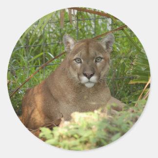 Puma 016 runt klistermärke