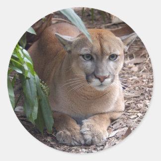 Puma 018 runt klistermärke