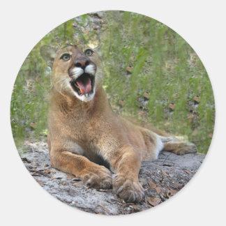 Puma 019 runt klistermärke