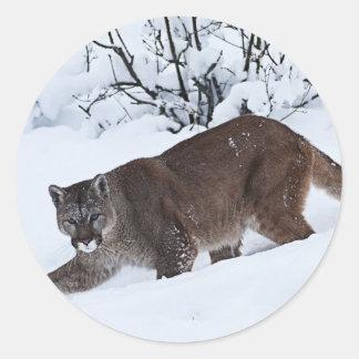 Puma på jakten runt klistermärke