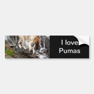 Puma på vattenfallet bildekal