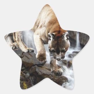 Puma på vattenfallet stjärnformat klistermärke