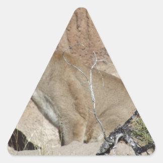 Puma Triangelformat Klistermärke
