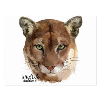 Puma Vykort